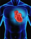 Probleme de sanatate cu inima si arterele